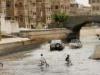 رئيس الوزراء اليمني يوجه بوضع حلول عاجلة لدرء مخاطر السيول في مأرب